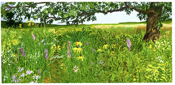 Flower Painting - Miscellaneous Oak And Aster by Alice Ann Barnes