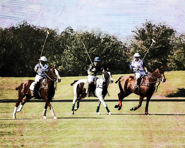 Wall Art - Photograph - Missing The Offence Player Polo by Gaby Ethington