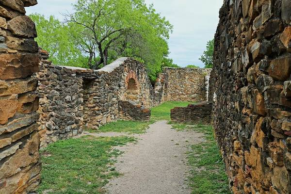 Photograph - Mission Espada V by Michiale Schneider
