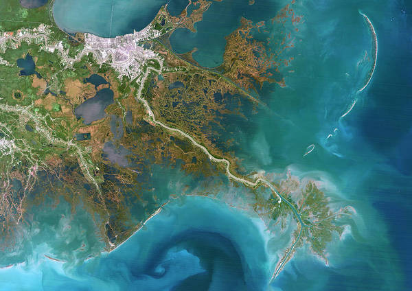 Looking Down Photograph - Mississippi Delta, Satellite Image by Planetobserver