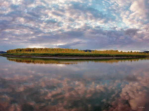 Photograph - Missouri Reflections by Leland D Howard