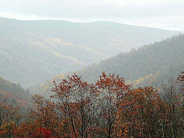 Wall Art - Photograph - Mist On The Mountain - 5 by Arlane Crump