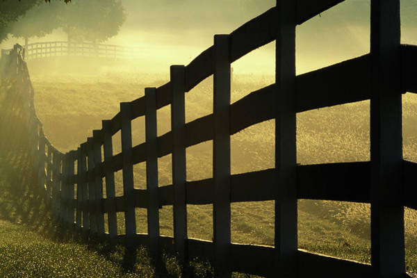 Wall Art - Photograph - Mist Rising In Field, View Along Wooden by Tony Sweet