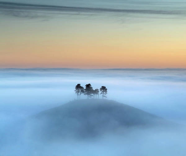 Dorset Wall Art - Photograph - Mists Around Colmers Hill by Colourful Images That Celebrate Dorset And Beyond.