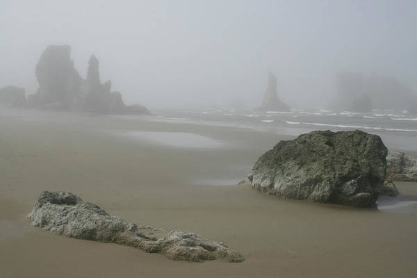 Photograph - Misty Bandon Protrusions by Dylan Punke