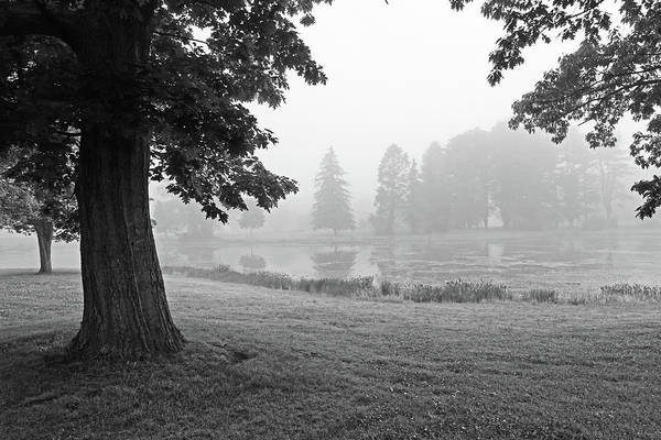 Photograph - Misty Day In Patton Park Hamilton Ma Black And White by Toby McGuire