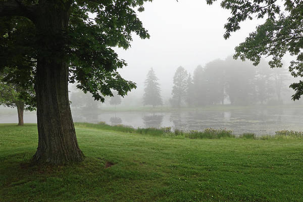 Photograph - Misty Day In Patton Park Hamilton Ma by Toby McGuire