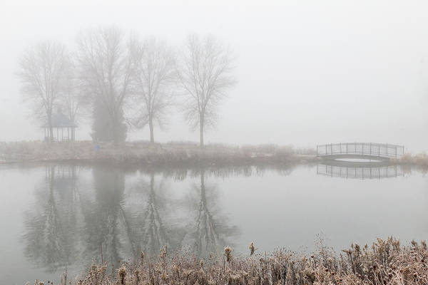 Photograph - Misty Island Park by Patti Deters