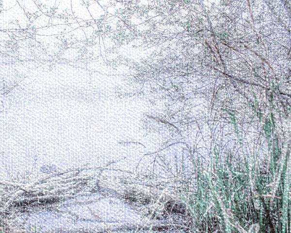 Photograph - Misty Lake View by Nigel Dudson