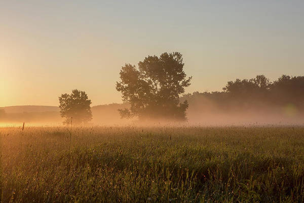 Photograph - Misty Morning In The Great Meadows by Kyle Lee
