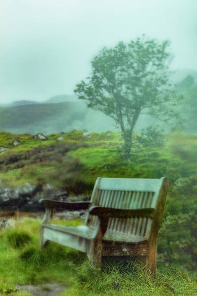 Photograph - Misty Morning In The Rain by Debra and Dave Vanderlaan