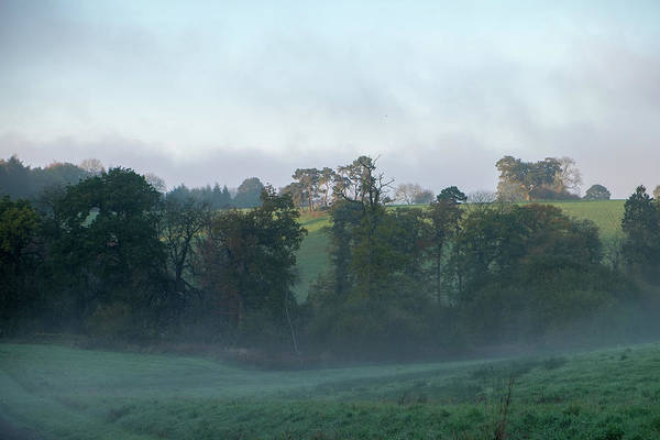 Photograph - Misty Morning by Mark Hunter