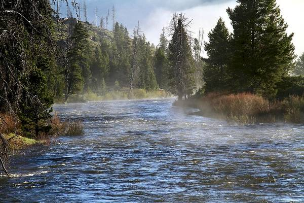 Photograph - Misty Morning On Idaho's Salmon River by Ed  Riche