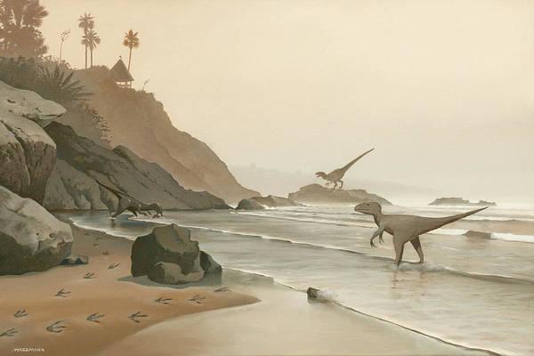 Painting - Misty Morning Rockpile Beach by Cliff Wassmann