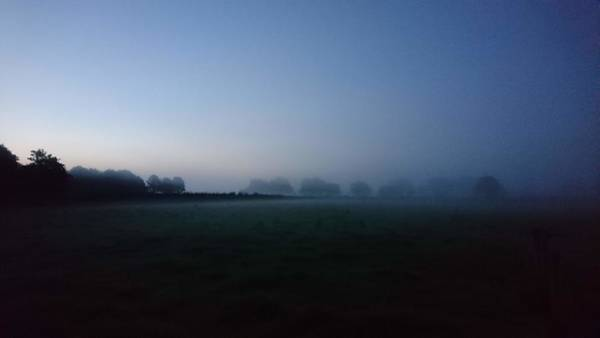 Photograph - Misty Morning by Samuel Pye