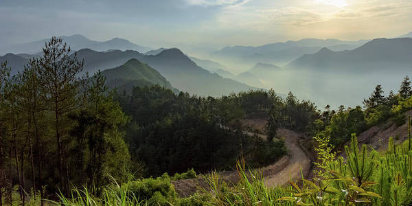 Photograph - Misty Mountain Morning by William Dickman