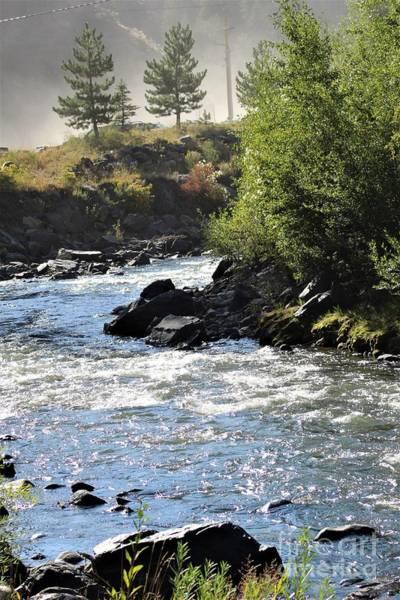 Photograph - Misty Mountain Stream by Tammie J Jordan
