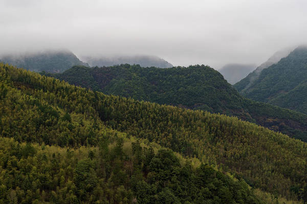 Photograph - Misty Mountains I by William Dickman
