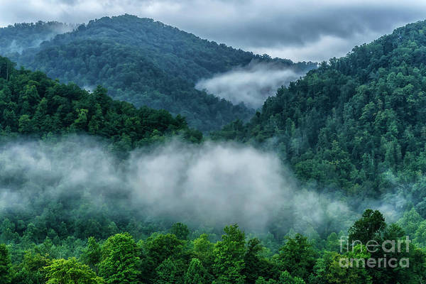 Photograph - Misty Mountains In Summer by Thomas R Fletcher