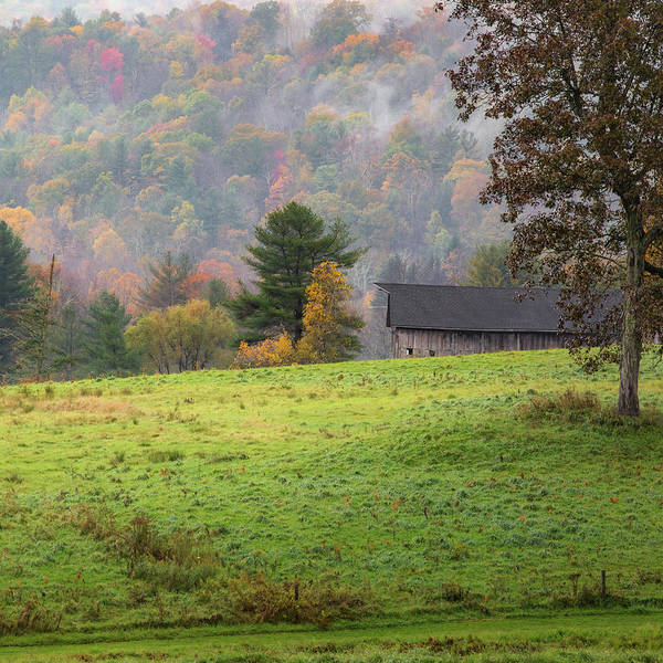 Wall Art - Photograph - Misty New England Autumn Square by Bill Wakeley