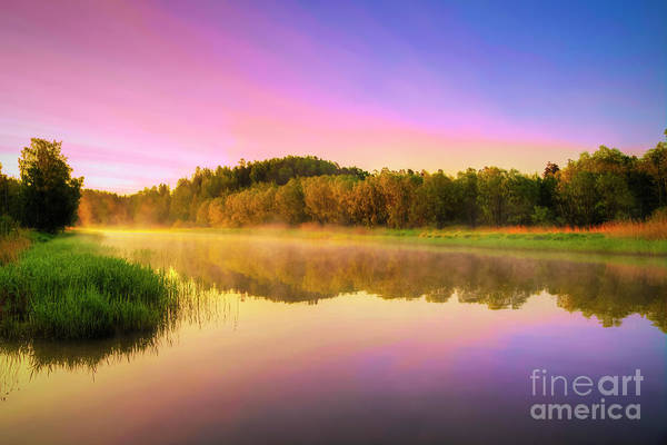 Wall Art - Photograph - Misty River by Veikko Suikkanen