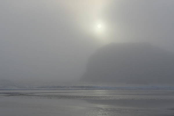 Photograph - Misty Silhouette by Dylan Punke