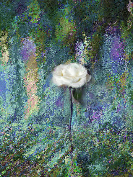 Mixed Media - Misty White Rose In Blue And Green by Corinne Carroll