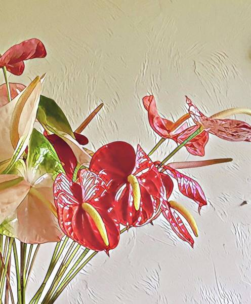 Photograph - Mixed Anthurium Aloha Two by Joalene Young