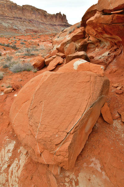 Photograph - Moab's Redrock Desert by Ray Mathis