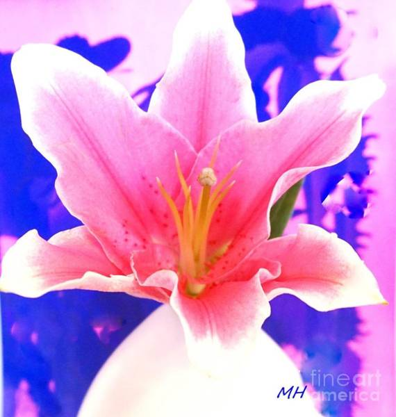 Wall Art - Photograph - Mod Pink Lily by Marsha Heiken