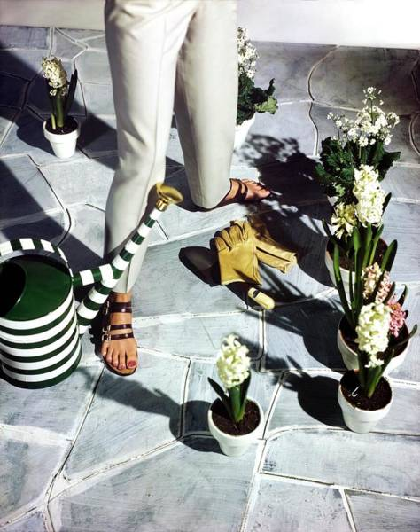 Photograph - Model In Joyce Sandals By Plants by Horst P. Horst