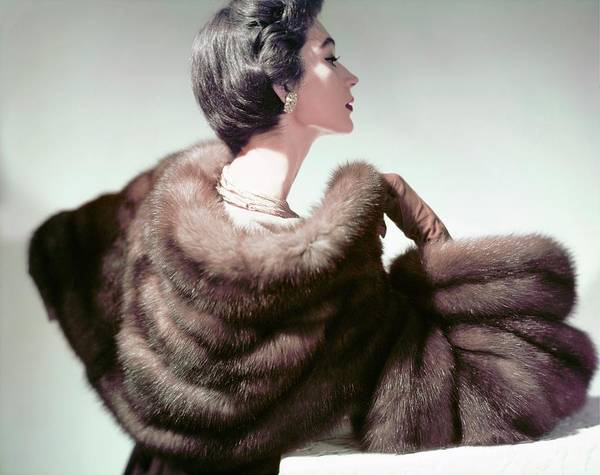 Photograph - Model In Ritter Brothers Sable by Horst P. Horst