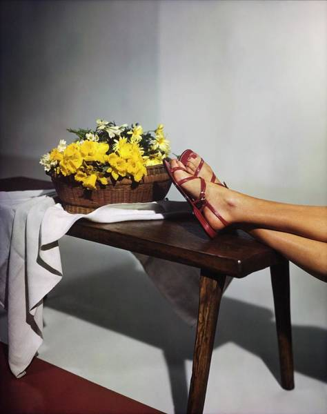 Photograph - Model's Feet In Red Delman Sandals by Horst P. Horst