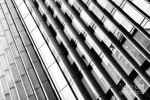 Photograph - Modern Lines Monochrome by Tim Gainey