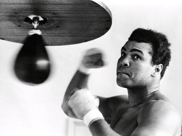 Boxing Photograph - Mohammed Ali by Omikron -