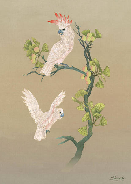 Wall Art - Digital Art - Moluccan Cockatoos  by M Spadecaller