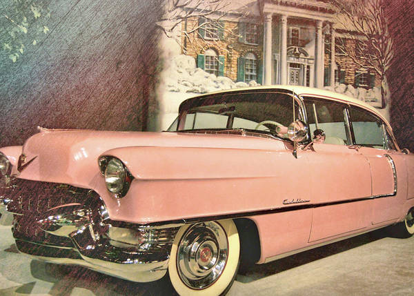 Photograph - Momma's Ride by Jamart Photography