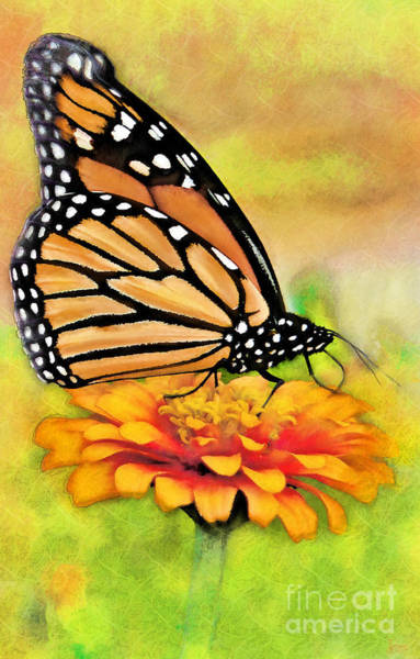 Digital Art - Monarch Butterfly On Flower by Jeff Breiman