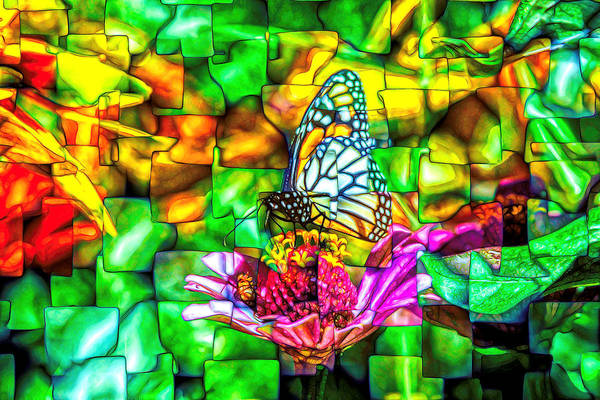 Photograph - Monarch Butterfly Super Abstract by Don Northup