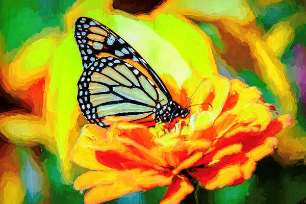 Photograph - Monarch Butterfly Van Gogh Style by Don Northup
