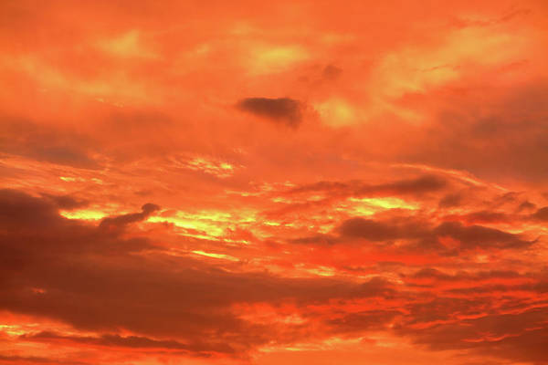 Photograph - Monday Skies - Flame by Nicholas Blackwell