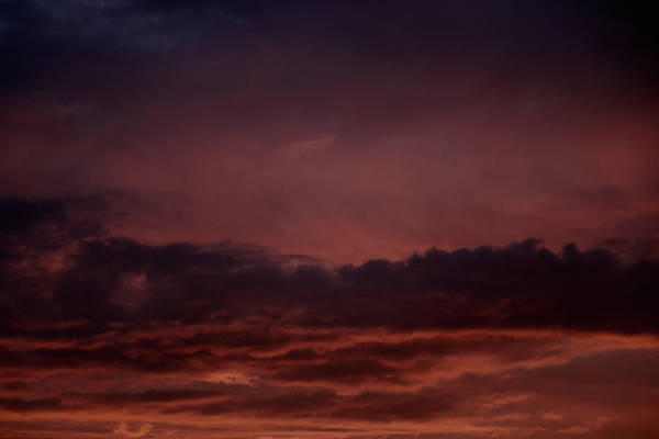 Photograph - Monday Skies - Russet by Nicholas Blackwell