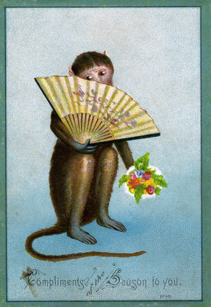 Humor Digital Art - Monkey Holding Fan by Graphicaartis