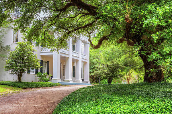 Photograph - Monmouth - Natchez, Mississippi by Susan Rissi Tregoning