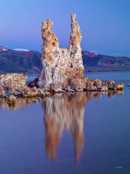 Photograph - Mono Lake Tooth by Leland D Howard