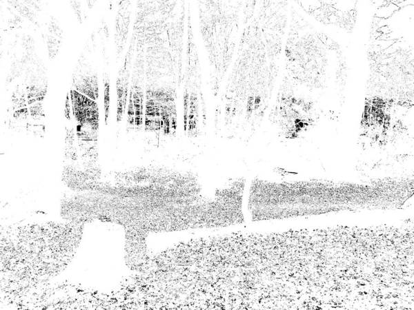 Photograph - Monochromatic Forest Trees In Highgate Woods 63 by Artist Dot