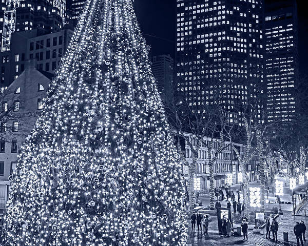 Photograph - Monochrome Blue Nights Faneuil Hall Christmas Tree 2018 Boston Ma by Toby McGuire