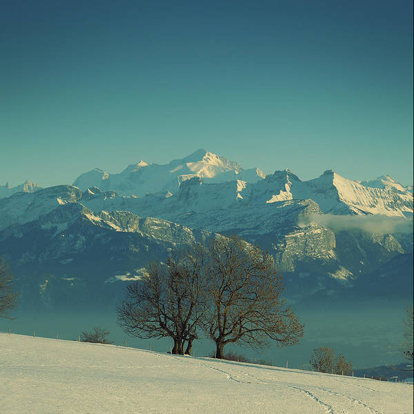 Mont Blanc Wall Art - Photograph - Mont Blanc by Lionel Albino