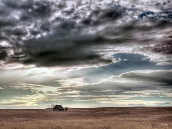 Photograph - Montana Grasslands by Leland D Howard