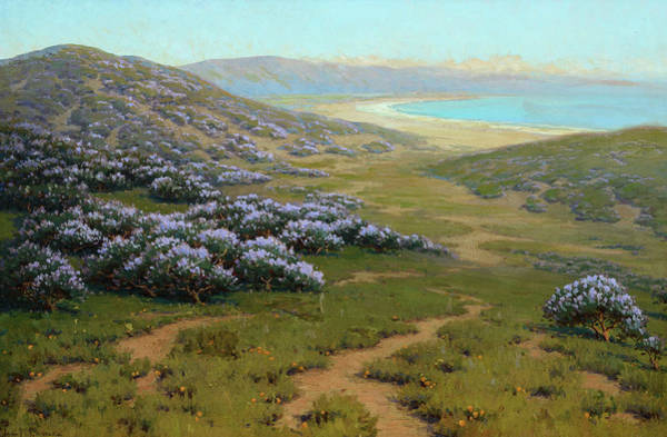 Painting - Monterey Dunes, Bush Lupine, 1911 by John Marshall Gamble
